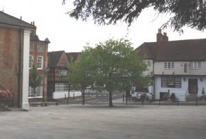 Town Square Oak